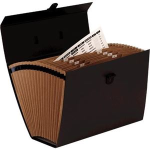 Picture of Ειδικά προϊόντα Bankers Box® Handifile Organiser - Black 9352101